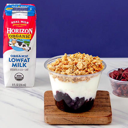 Blueberry Crunch Yogurt Parfait served with Dried Cranberries