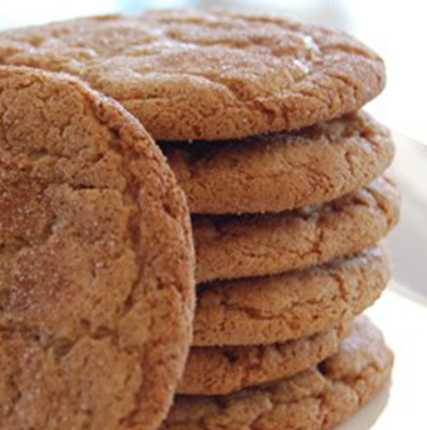 Snickerdoodle Greek Yogurt Protein Cookies